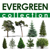 evergreen collection